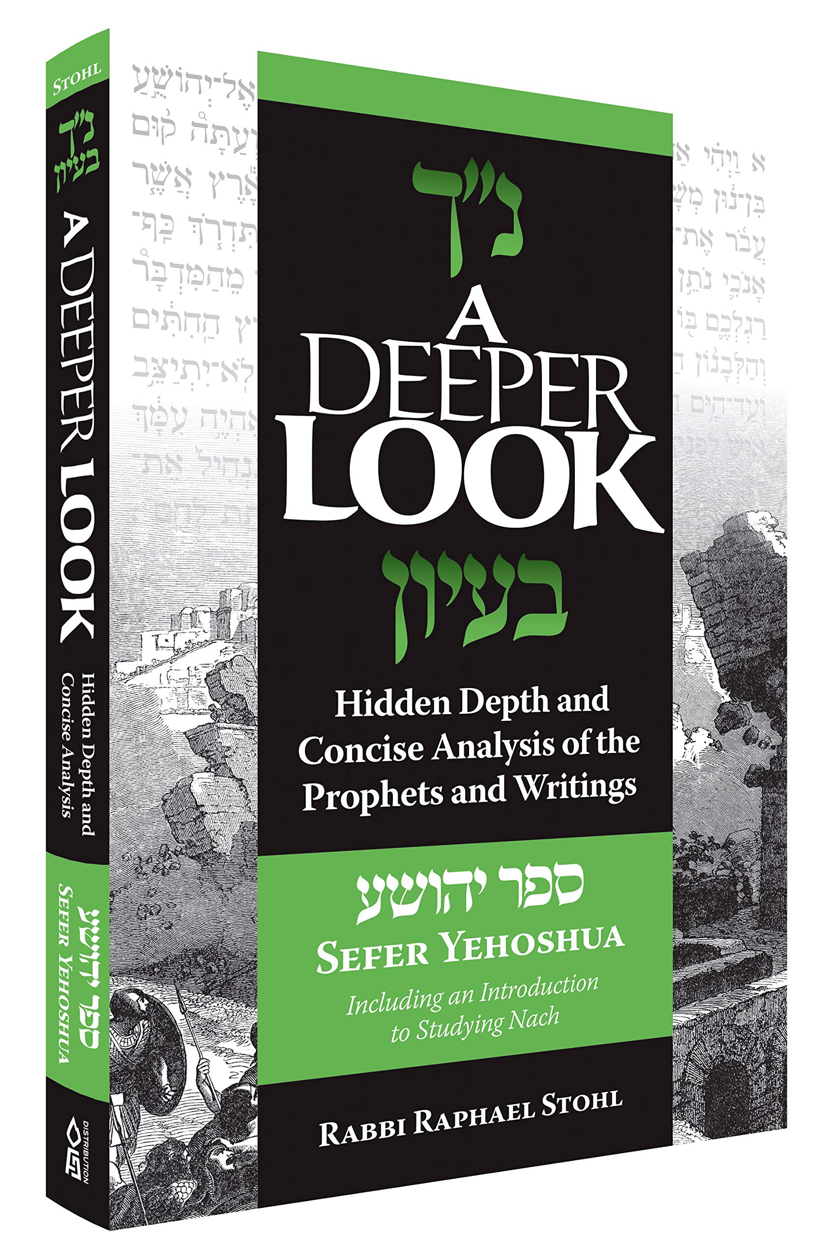 A Deeper Look, Yehoshua: Hidden Depth and Concise Analysis of the Prophets and Writings by Rabbi Raphael Stohl