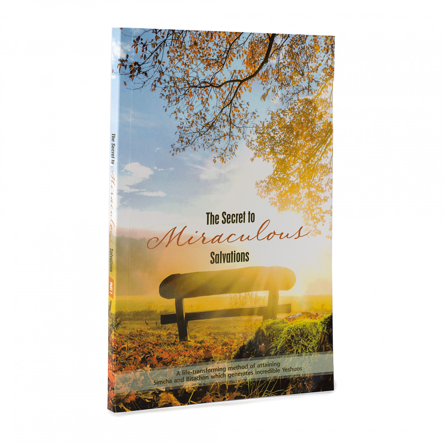 The Secret to Miraculous Salvations Volume 1 - Paperback by C. T. Friedman
