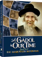 A Gadol In Our Time: Stories about Rav Aharon Leib Shteinman By Libby Lazewnik