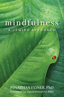 Mindfulness by: Jonathan Feiner