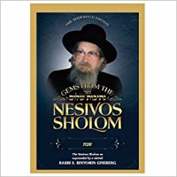 Gems from the Nesivos Shalom:Shabbos