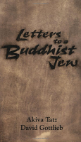 Letters to a Buddhist Jew by Akiva Tatz