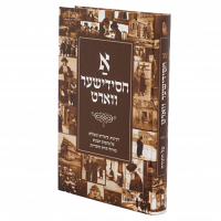 A Chassidisher Vort by Rabbi Yisroel Yosef Bronstein Volume 2