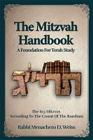 The Mitzvah Handbook
