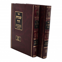 Simchas Dovid 2 Volume Set by Rabbi Simcha Dovid Wolf