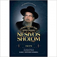 Gems from the Nesivos Shalom: PirkeiAvos