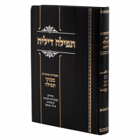 Tefillah Dilei by Rabbi Avraham Chanunu