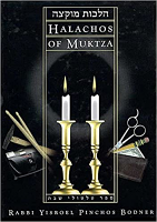 Halachos of Muktzah